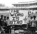 TheWordIsBird